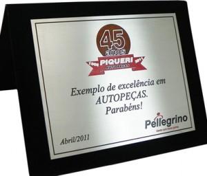 Placa de homenagem SA-11 Auto Peça. Lançamento de produto