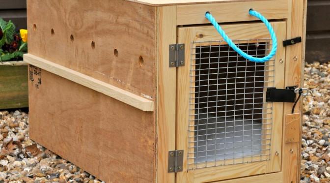 caixas transportar de cachorros