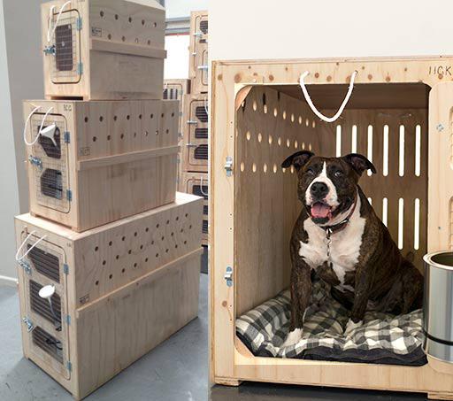 caixas-de-madeira-para-transportar-cachorros-003-1.jpg